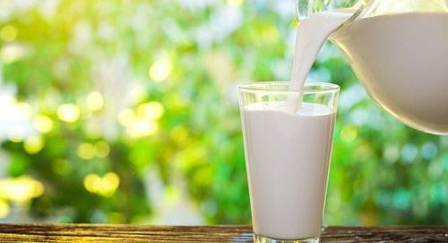 ¿La leche de vaca es buena o mala?